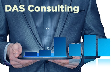 das consulting services